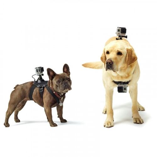 Montering Til Hunde (Kamera Tilbehør)